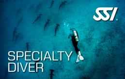 Speciality Diver Course in Lanzarote