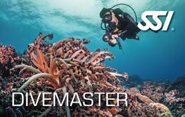 Divemaster-SSI