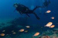 curso-open-water-diver-lanzarote-ssi-4