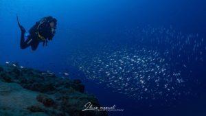 curso buceo profundo lanzarote