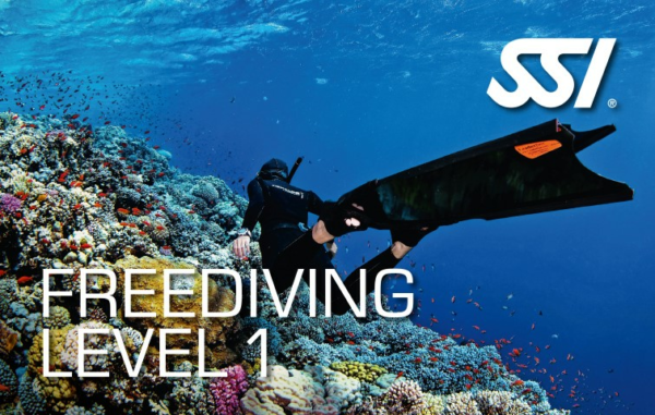 Freediving Level 1 in Lanzarote